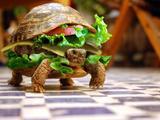 Das beste Sandwich aller Zeiten