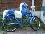 Pferdchen Fahrrad