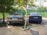 Parklückenbepflanzung