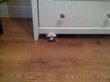 Ich verstecke mich