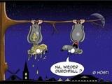 Fledermausdurchfall