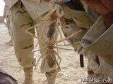 Kamelspinnen