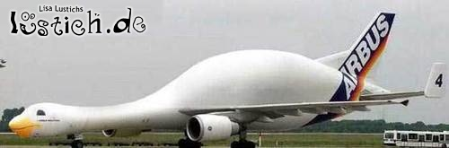 Gansflugzeug
