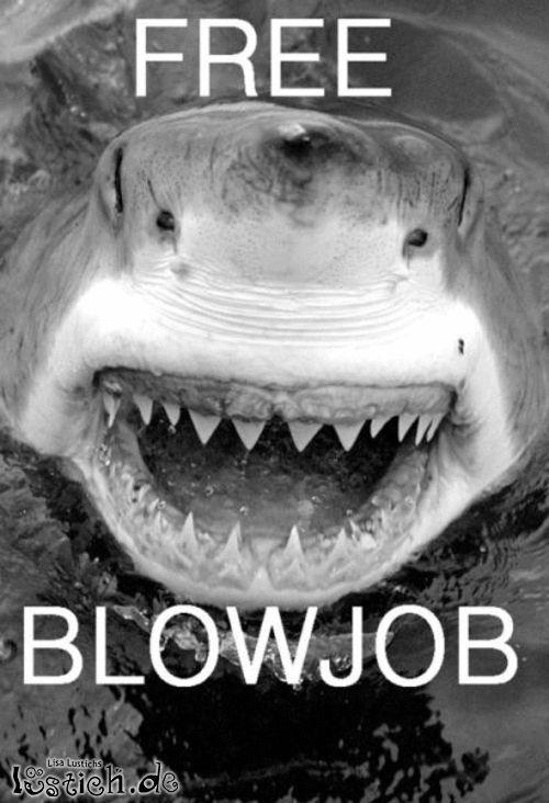 Free Blow Job Bild - lustich.de