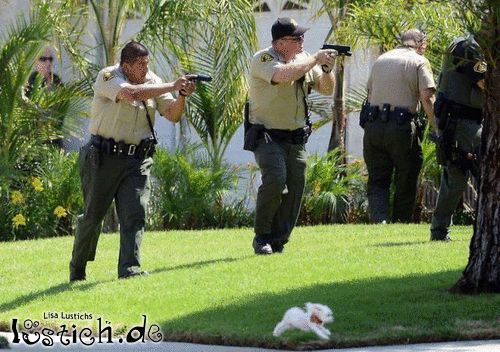 Kleiner Polizeihund