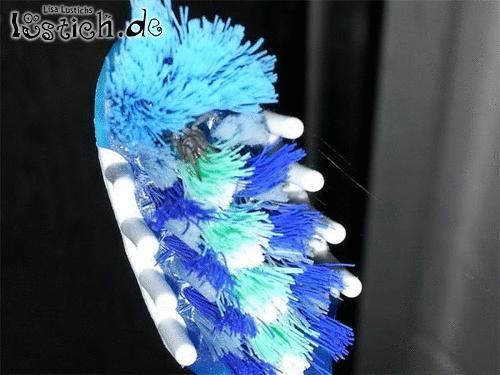 Zahnbürste prüfen
