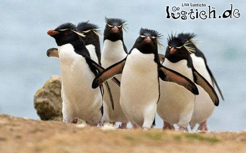 Die Gang kommt