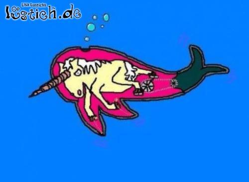 Die Wahrheit über Narwale