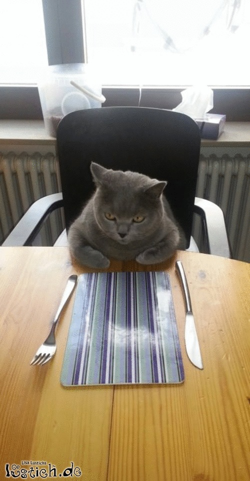 Ich habe wirklich Hunger