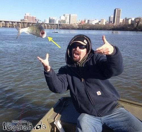 Cooler Fisch