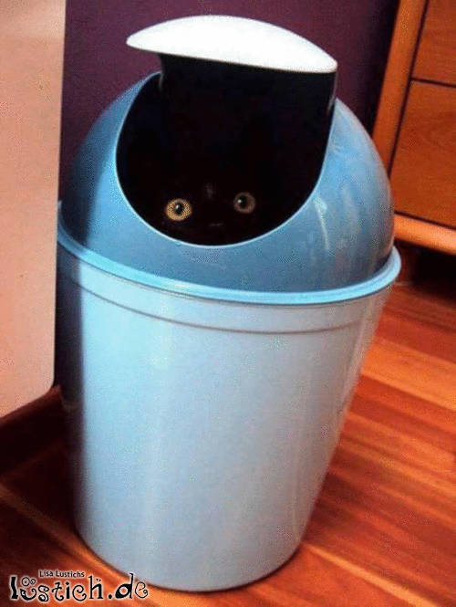 Lebendiger Müll