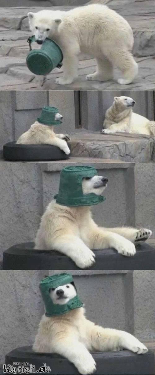 Mein neuer Hut