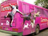 Gegen Bus gelaufen