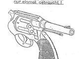 Ostfriesen-Colt