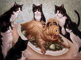 Die Rache der Katzen